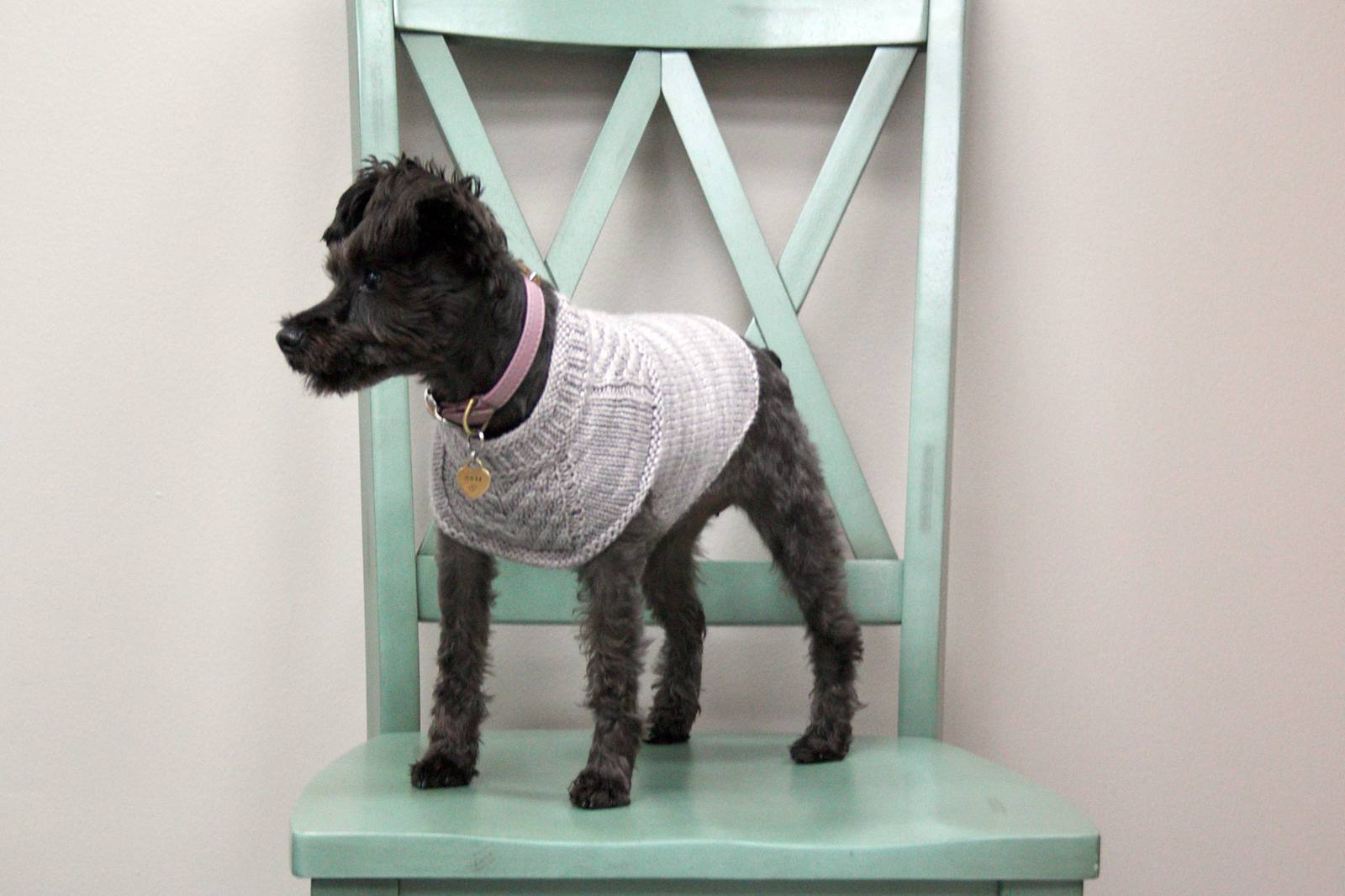 Dachshund Jumper Knitting Pattern 12 Dog Sweaters And Other Knitting Patterns For Pups