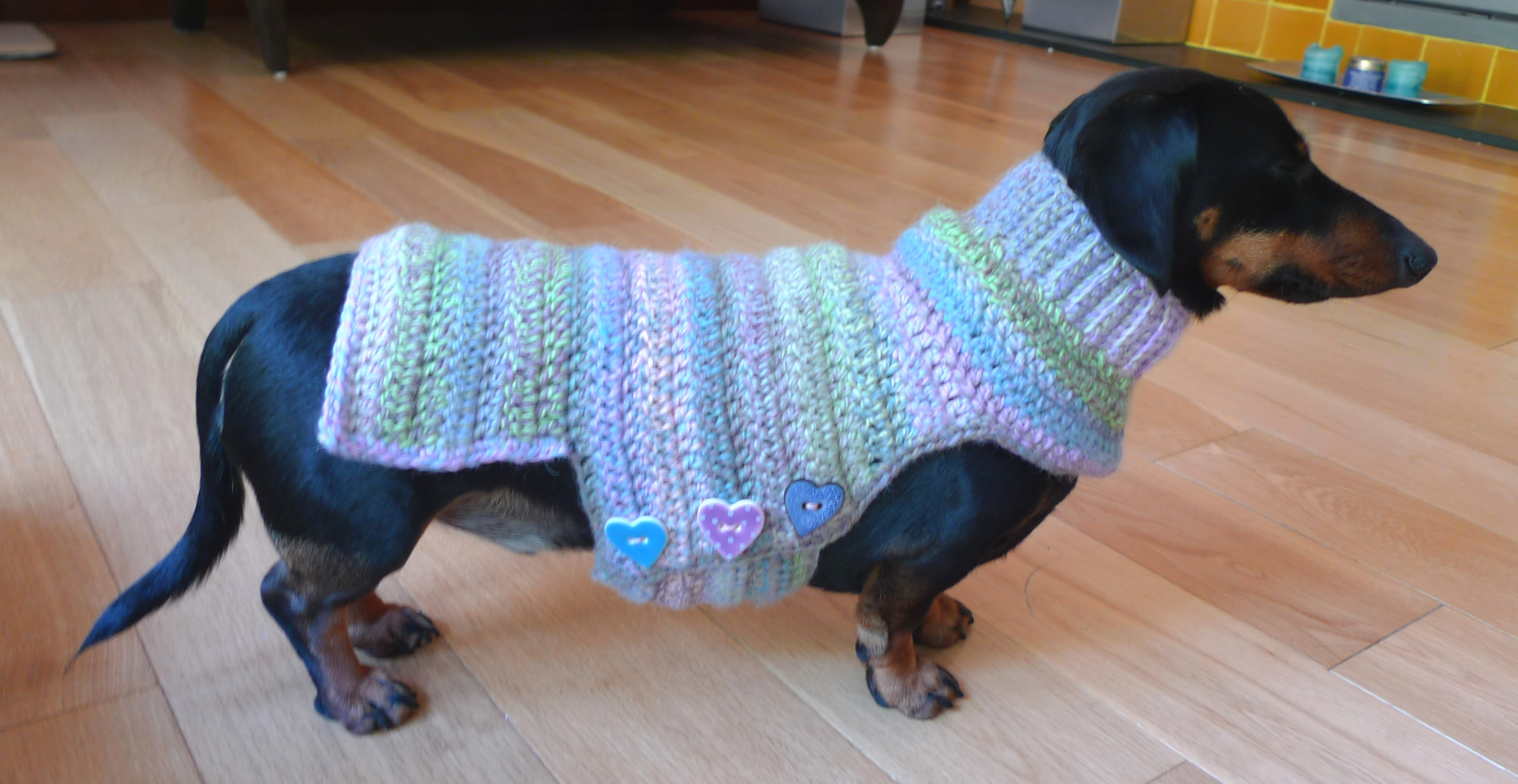 Dachshund Jumper Knitting Pattern Cute Crochet Dog Sweater Httplomets