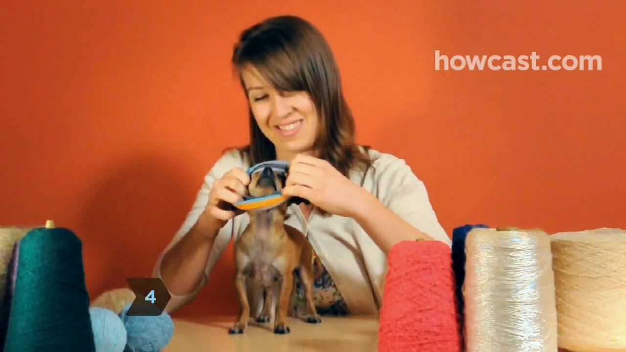 Dachshund Jumper Knitting Pattern How To Turn A Large Sock Into A Tiny Dog Sweater