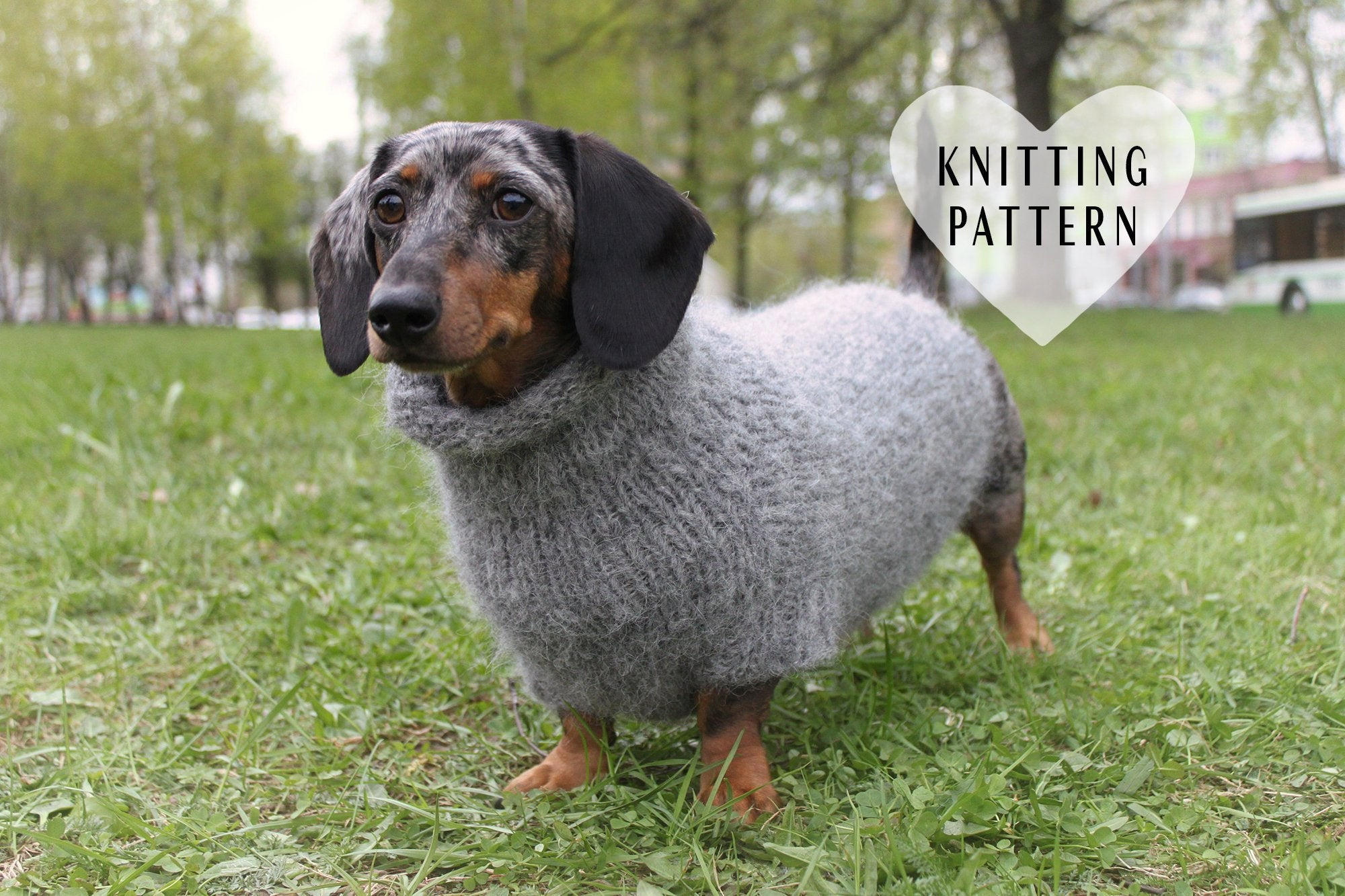 Dachshund Jumper Knitting Pattern Knitting Pattern Fuzzy Dachshund Sweater Oversized Dog Sweater Pet Clothes Mini Doxie Knit Knitted Top Down Dog Sweater Diy