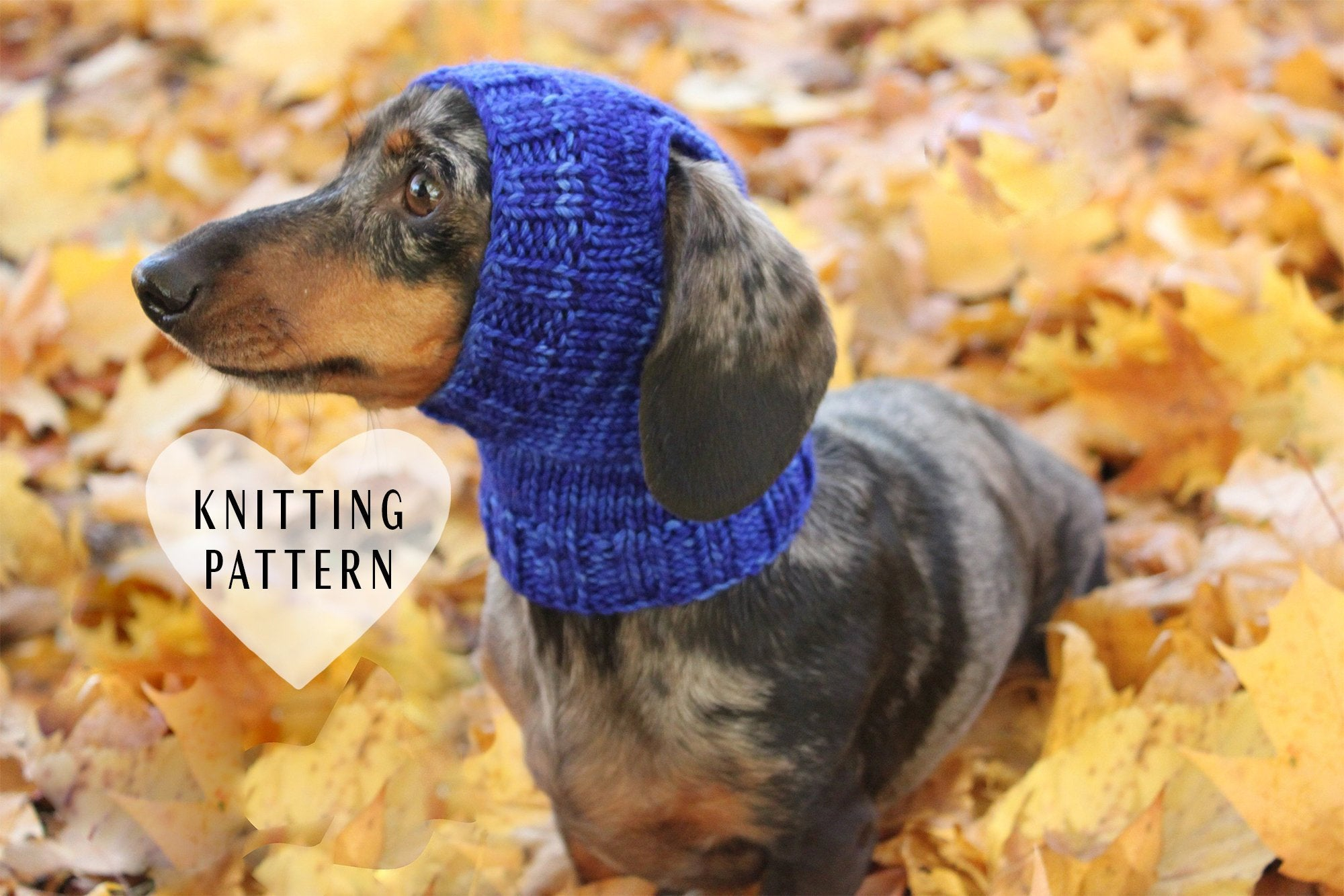 Dachshund Jumper Knitting Pattern Knitting Pattern Mini Dachshund Dog Hat Small Dog Hat Dog Clothes Knitted Hat Dog Fashion Dogs Pets Open Ear Dog Hat Malabrigo Yarn