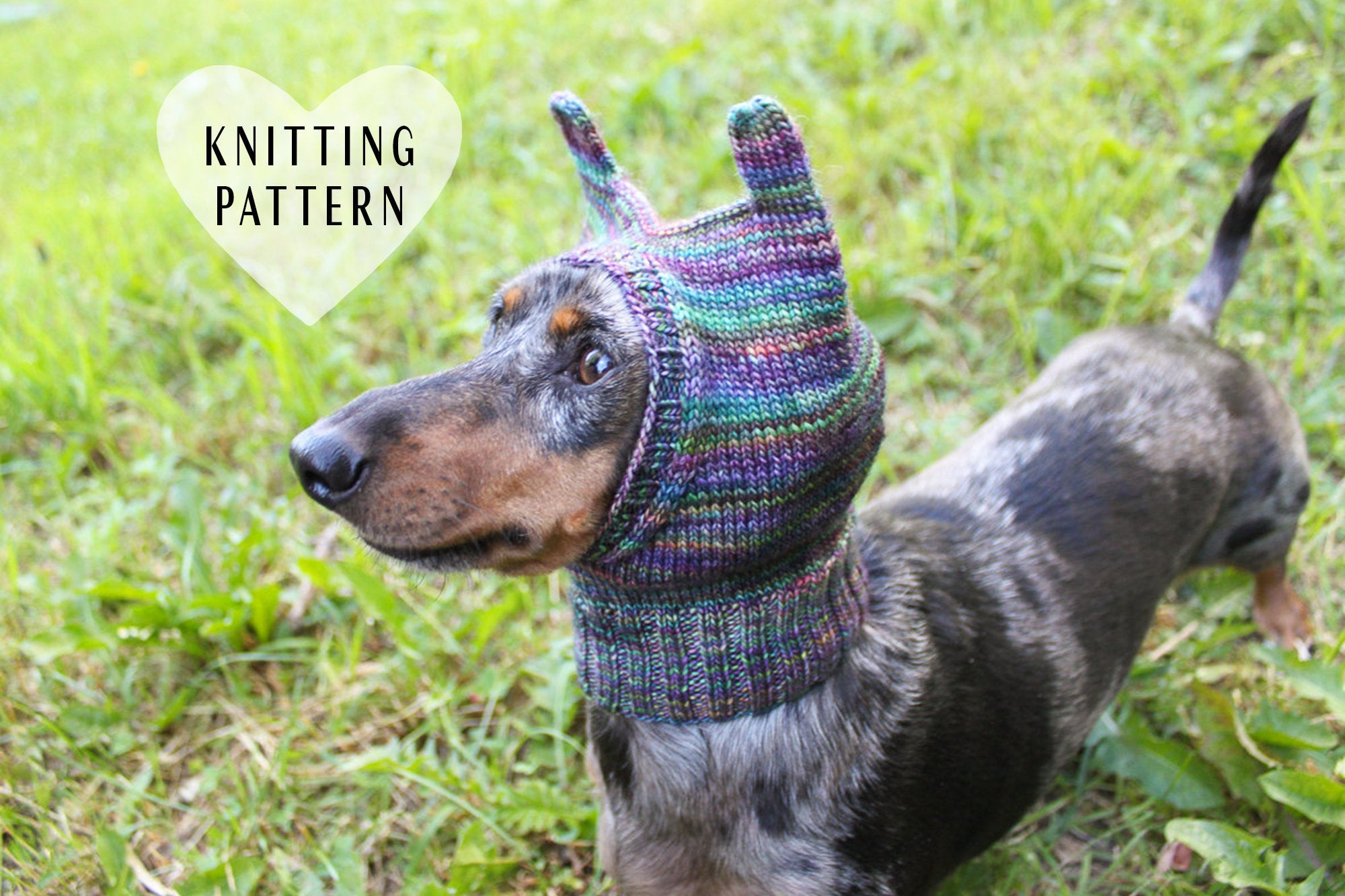 Dachshund Jumper Knitting Pattern Knitting Pattern Mini Dachshund Dog Hat Small Dog Hat Knitted Dog Hat Wiener Dog Hat Miniature Dachshund Clothes Knit Dog Clothes Pet