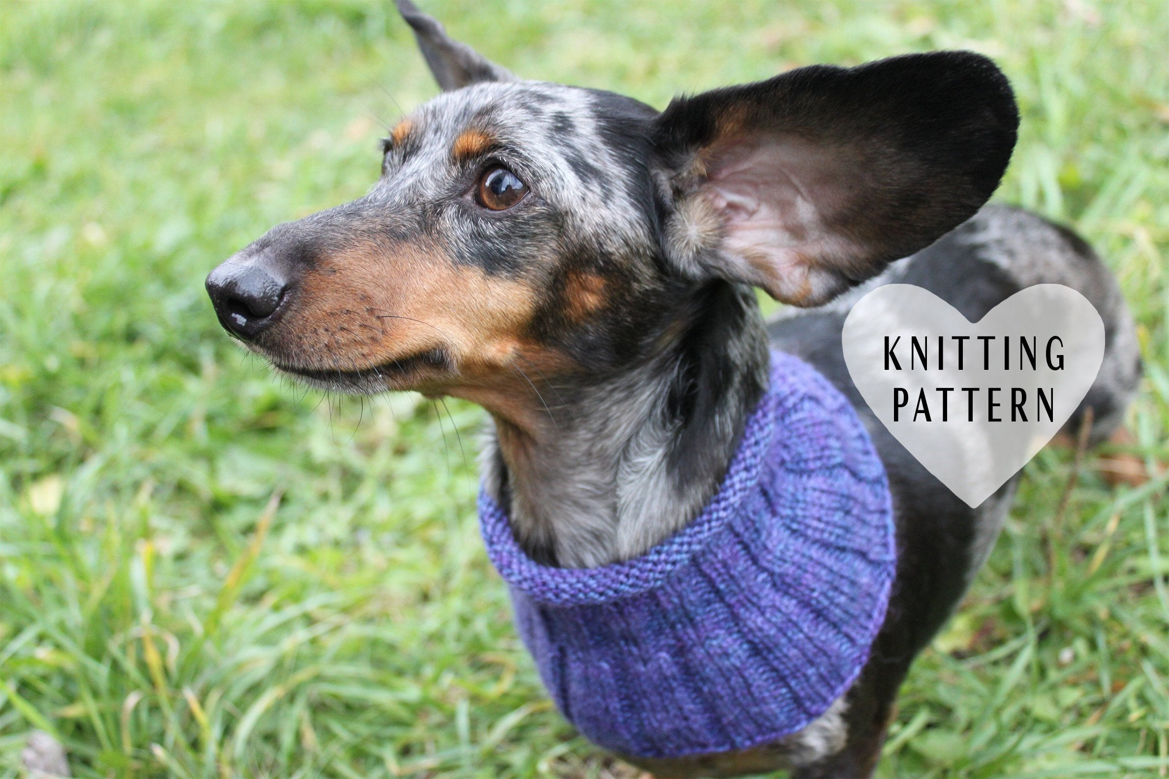 Dachshund Jumper Knitting Pattern Knitting Pattern Small Dog Cowl Neck Warmer Knitted Dog Cowl Dachshund Clothes Dog Clothes Miniatuer Dachshund Cowl Doxie Neck Warmer