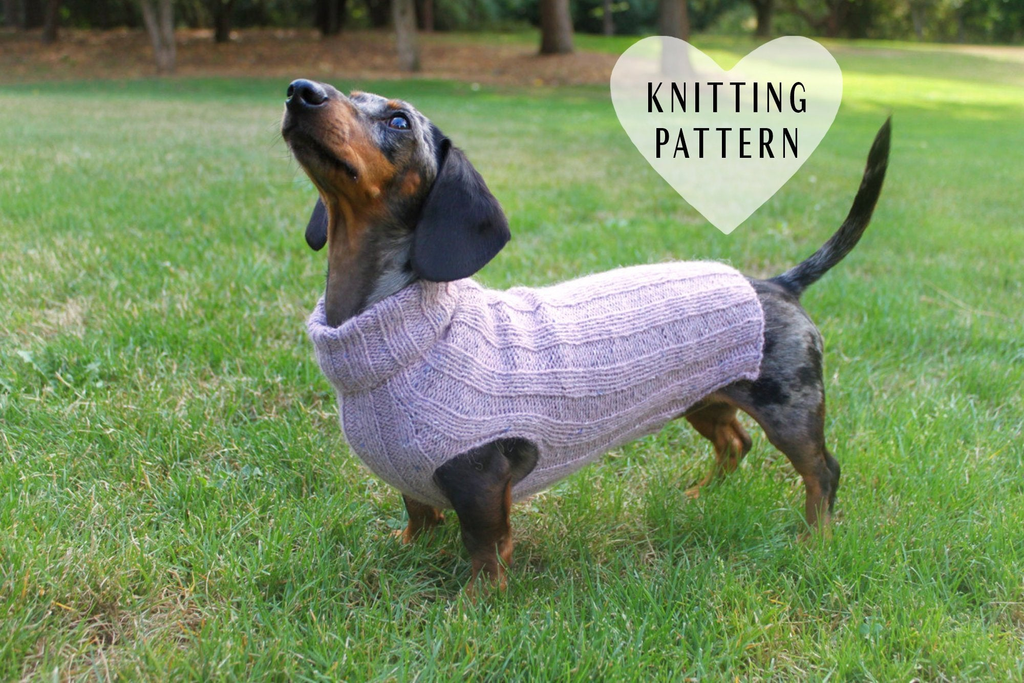 Dachshund Jumper Knitting Pattern Knitting Pattern Top Down Mini Dachshund Dog Sweater Pet Clothes Dogs Little Dog Diy Project Knit Knitted Doxie Wiener Dog Pets