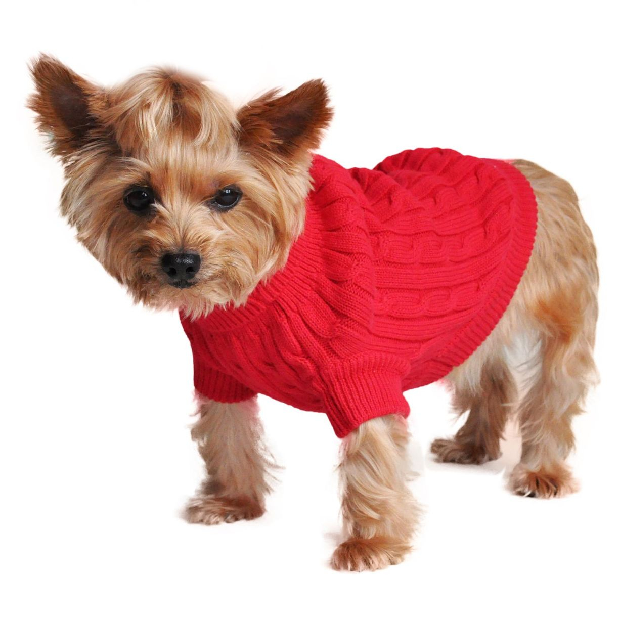 Dog Sweater Knitting Pattern Cotton Cable Knit Dog Sweater Pattern Free Hypoallergenic Dog Sweater