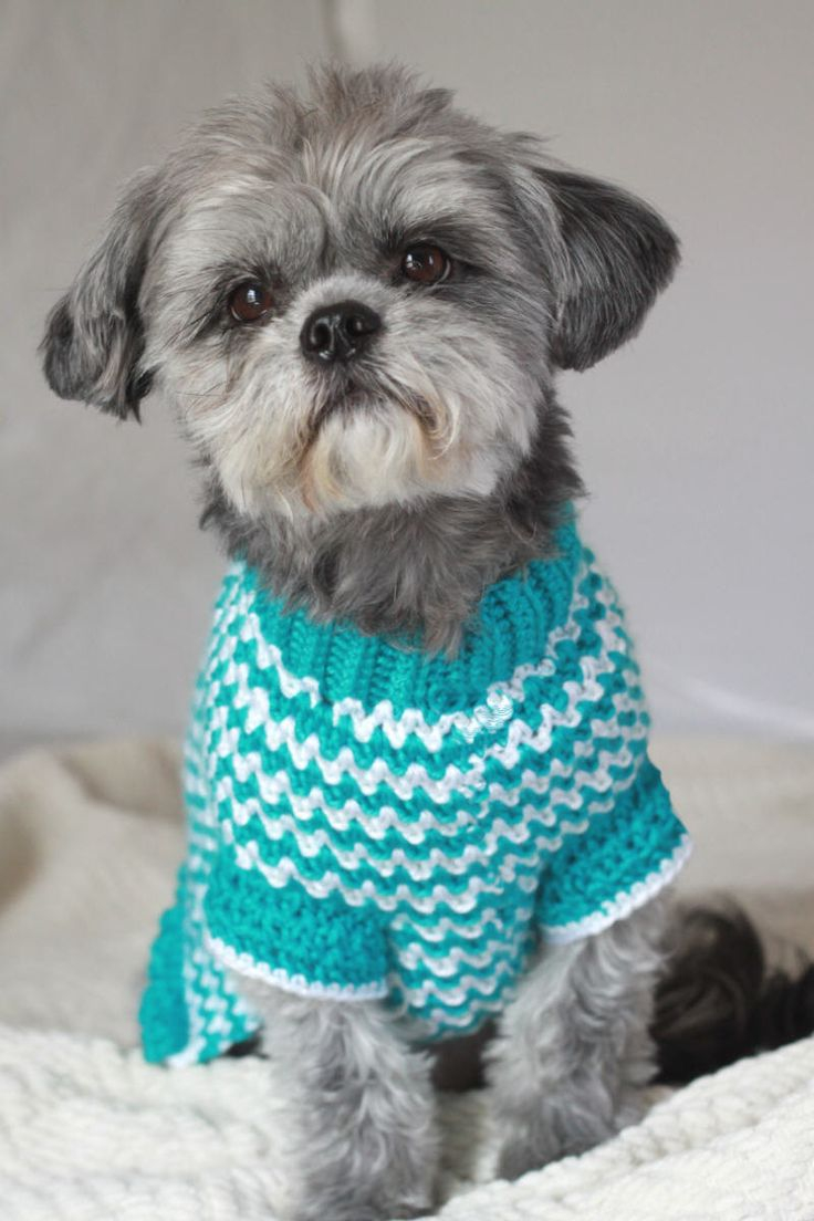 Dog Sweater Knitting Pattern Crochet Dog Sweater Patterns To Try Out Crochet And Knitting