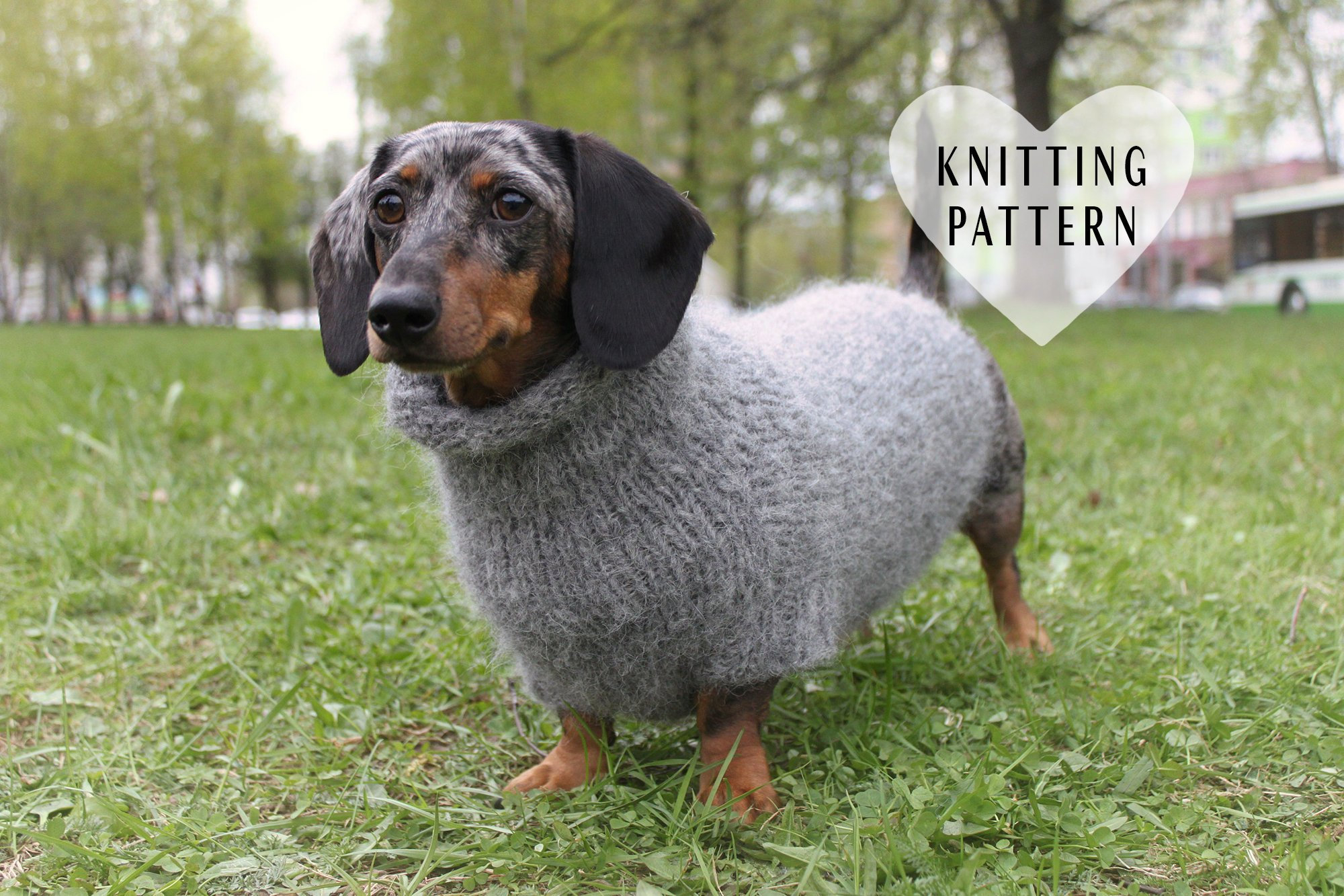 Dog Sweater Knitting Pattern Knitting Pattern Fuzzy Dachshund Sweater Oversized Dog Sweater Pet Clothes Mini Doxie Knit Knitted Top Down Dog Sweater Diy