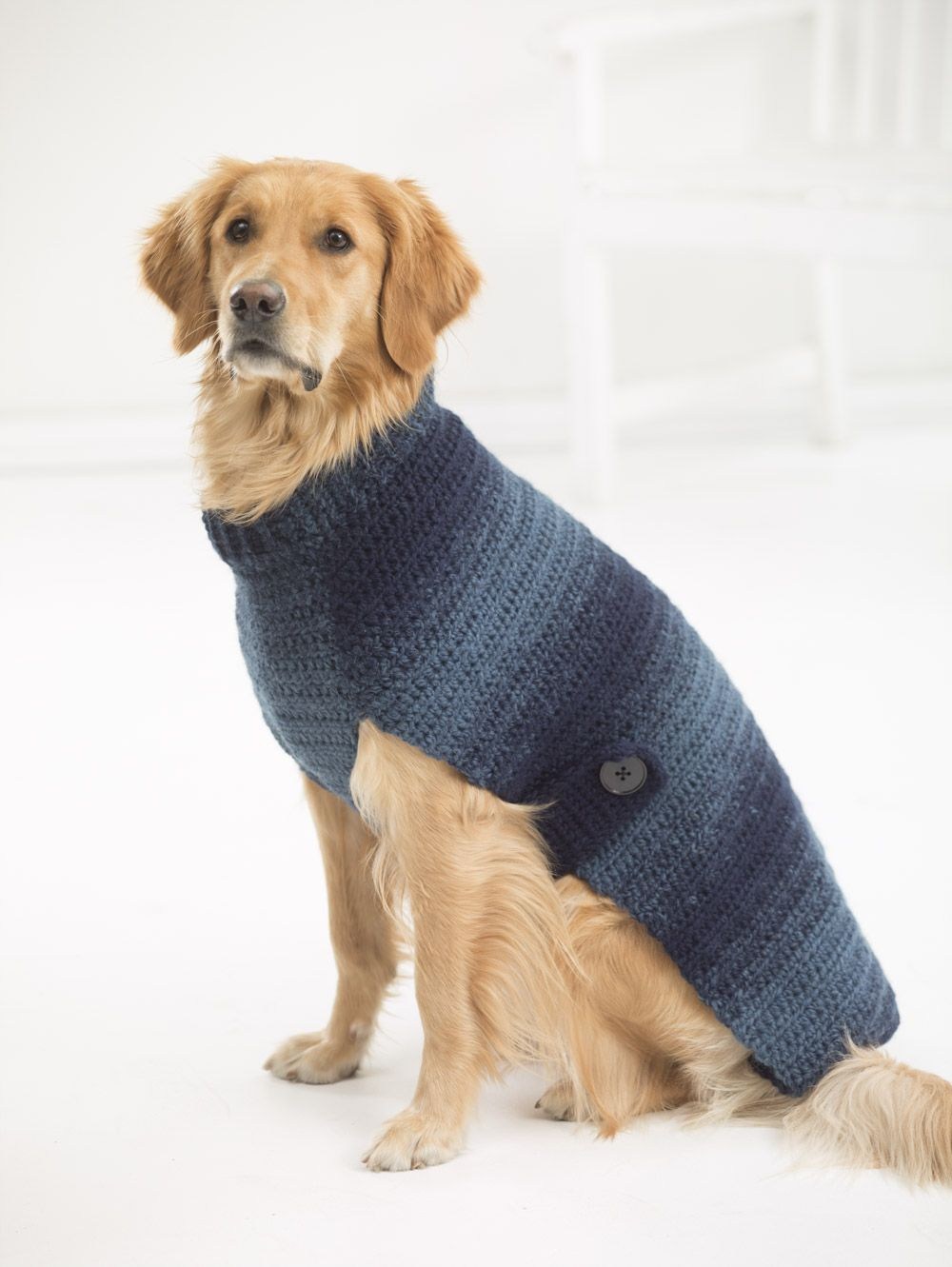 Dog Sweater Knitting Patterns Free Knitting Patterns For Dog Sweater For Basset