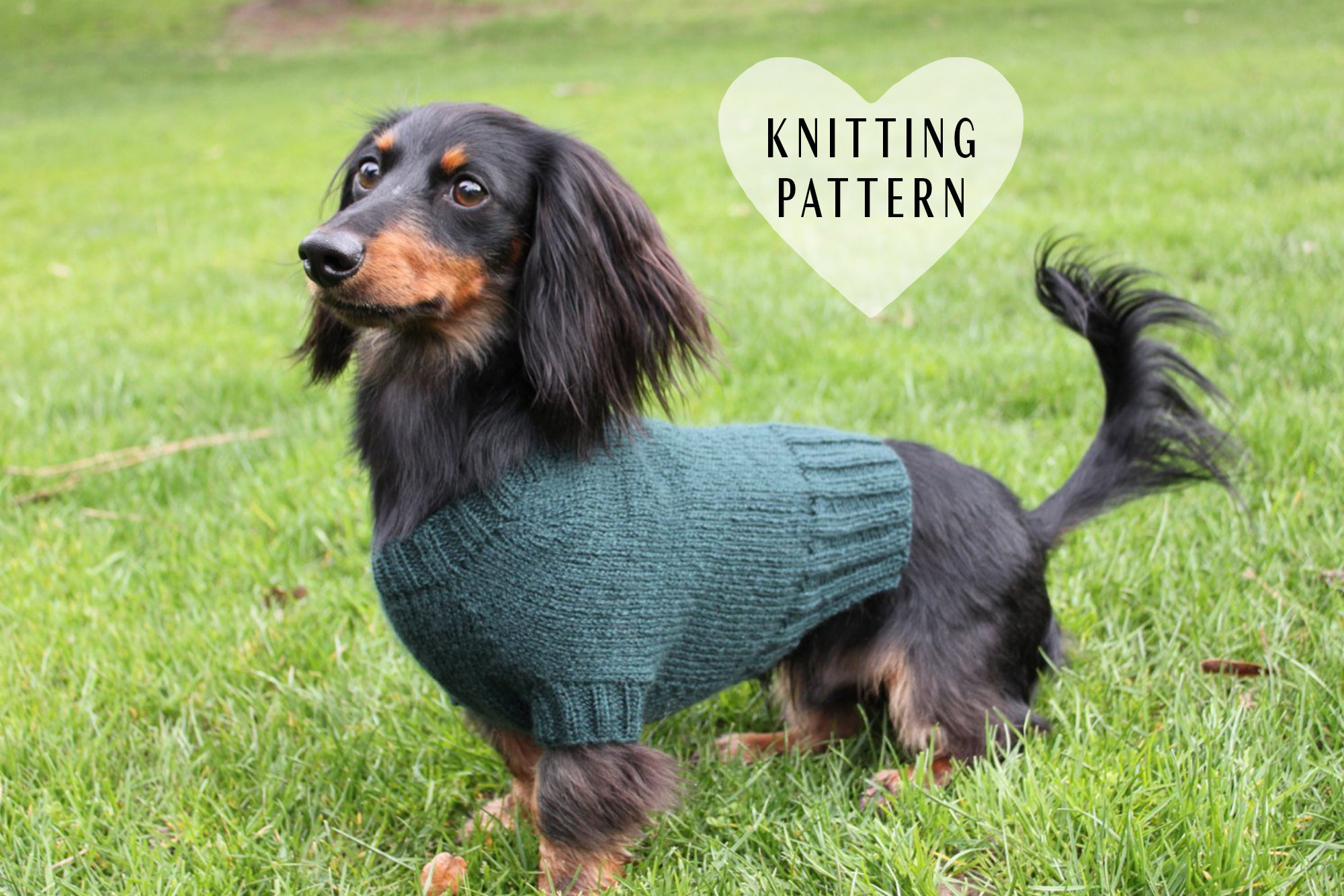 Dog Sweater Knitting Patterns Knitting Pattern Mini Dachshund Dog Sweater Cloud 9 Pet Clothes Pets Dogs Knit Knitted Diy Project Doxie Wiener Dog Little Dog
