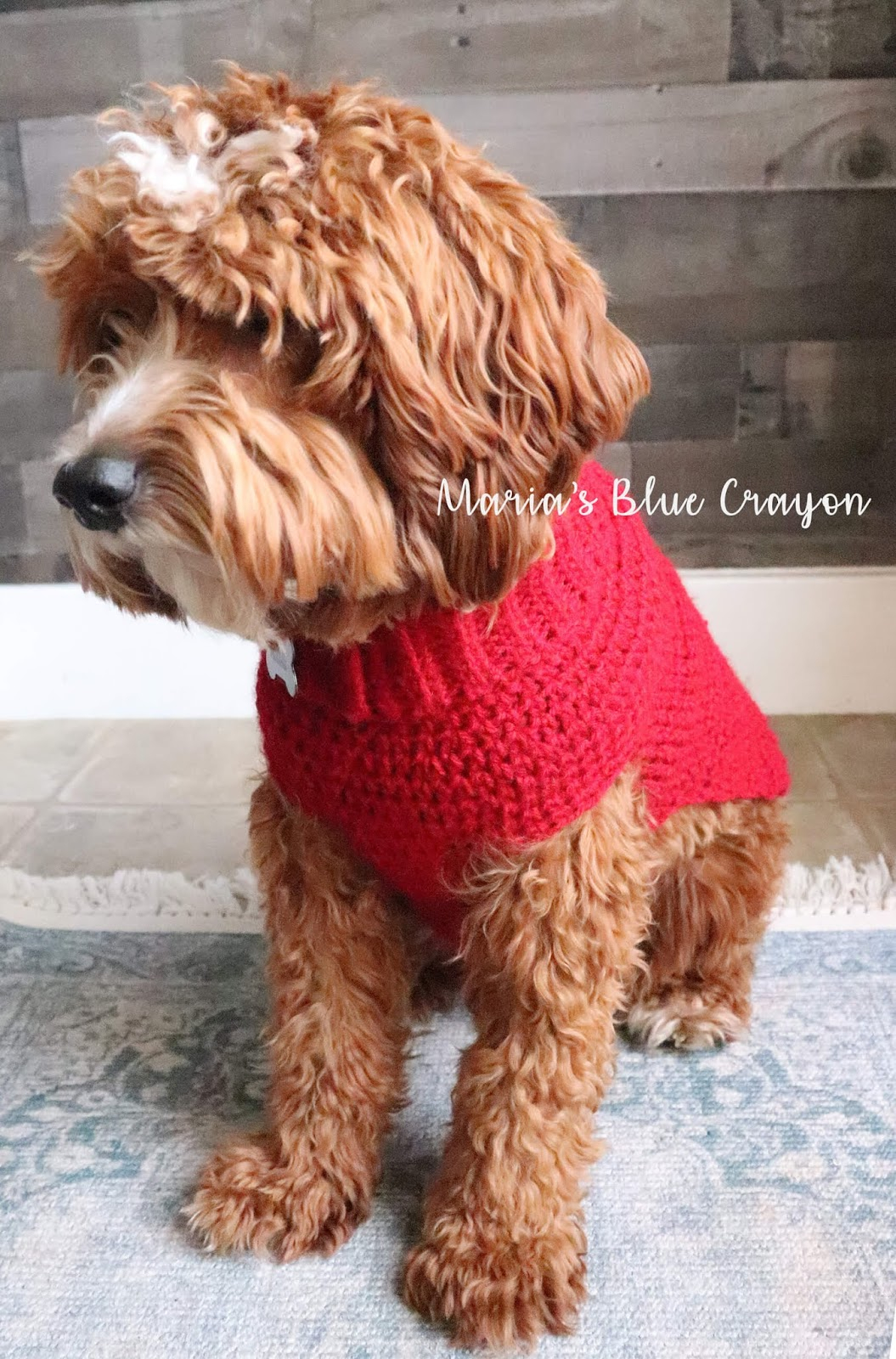 Easy Knitting Pattern For Dog Coat Crochet Dog Sweater Free Step Step Tutorial Marias Blue Crayon