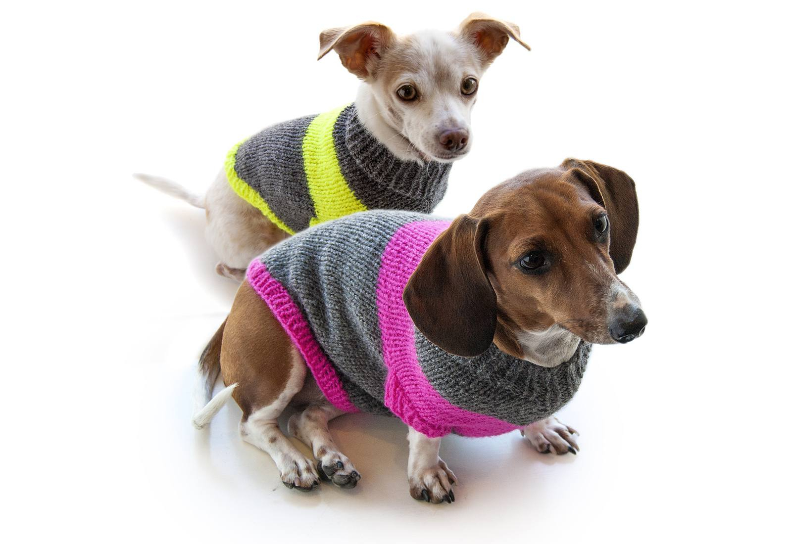 Knitted Dog Coat Pattern 12 Dog Sweaters And Other Knitting Patterns For Pups