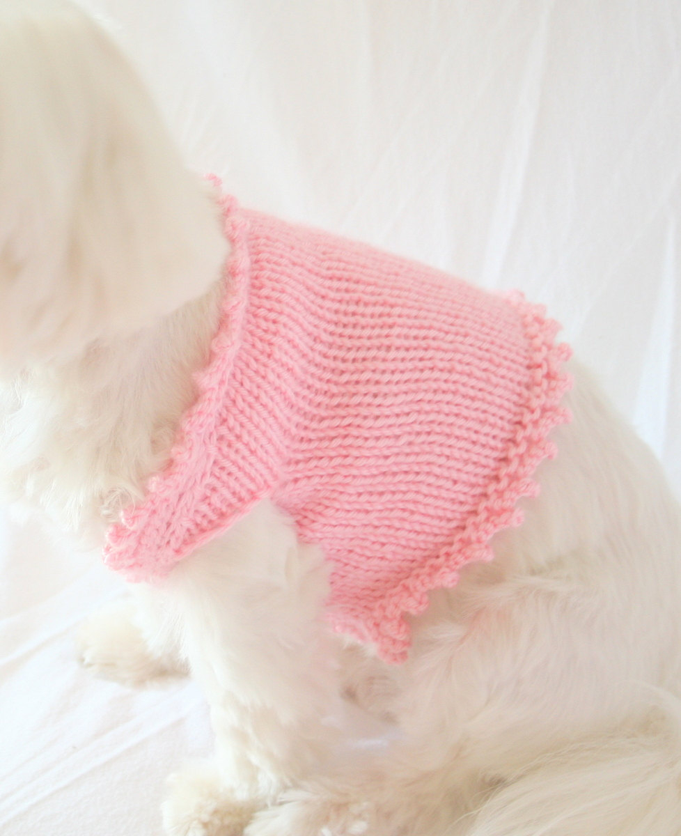 Knitted Dog Coat Pattern Knit Dog Sweater Pattern Dog Knitting Pattern
