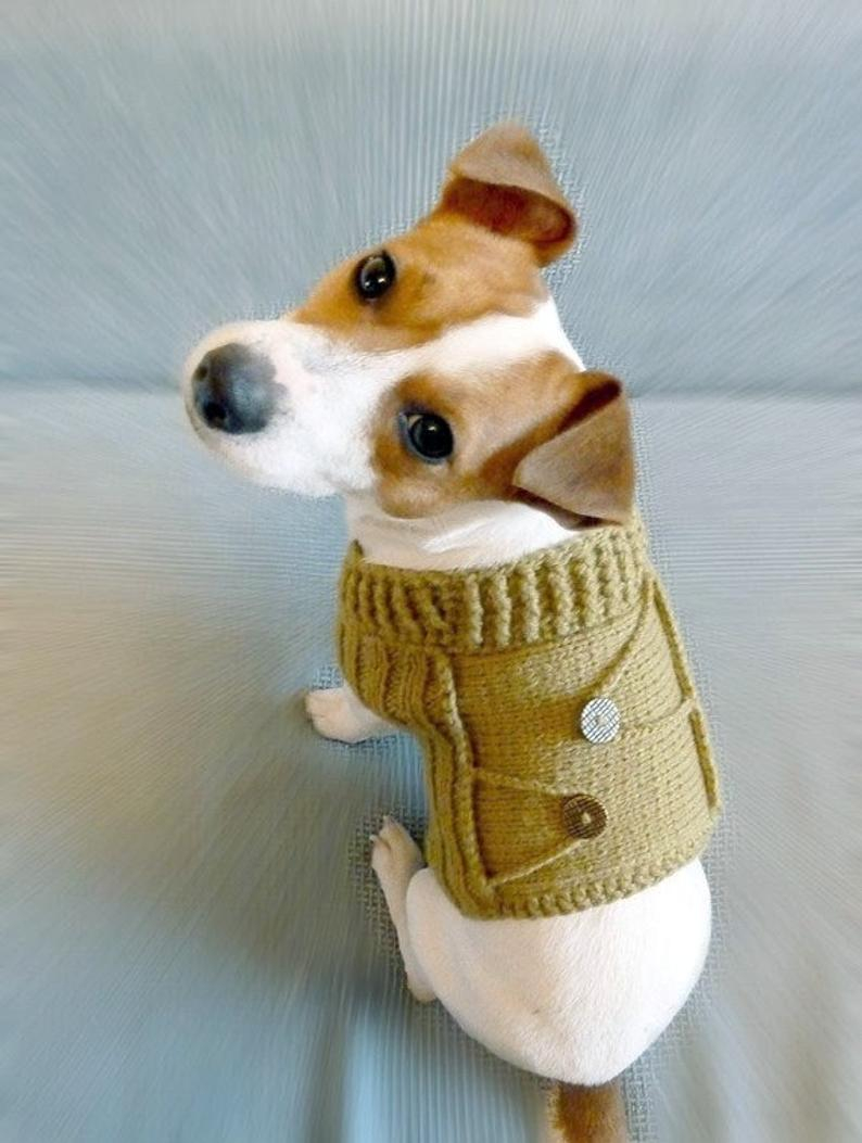 Knitted Dog Coat Pattern Knitting Pattern Dog Sweater Pattern Knit Dog Sweater Pattern Dog Clothes Pattern Pdf Pattern