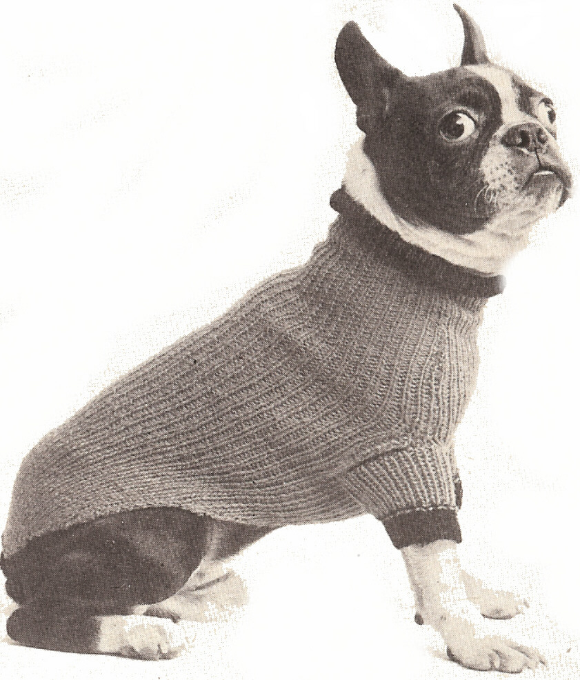 Knitted Dog Coat Pattern The Best Sweaters And Coats To Knit For Your Dog Free Patterns