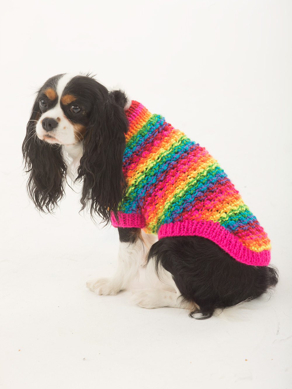 Small Dog Coat Knitting Pattern Free 12 Best Photos Of Free Easy Knit Dog Sweater Pattern Easy Knit Dog