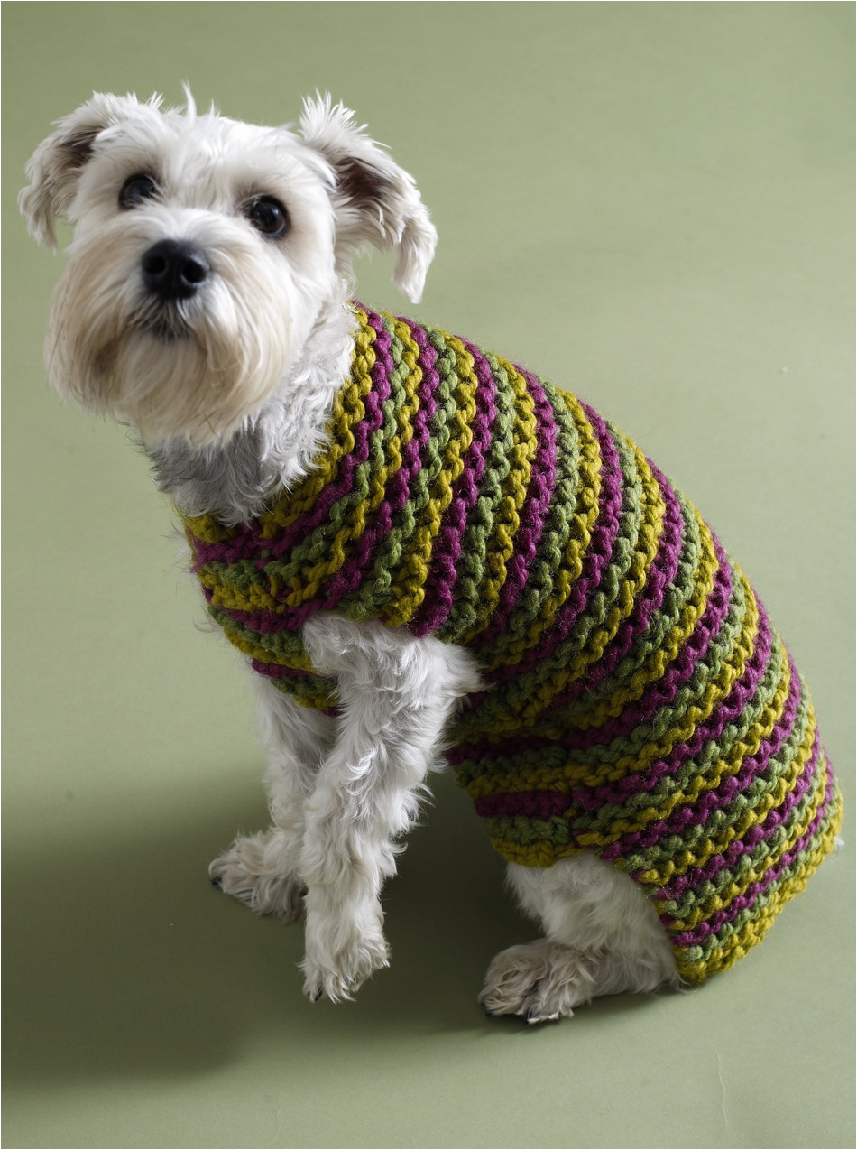 Small Dog Coat Knitting Pattern Free Patterns For Dog Clothes For Small Dogs Free Crochet Dog Sweater